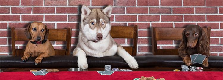 blog-poker-suertet
